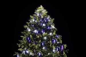 Weihnachtsbaum - Strasbourg