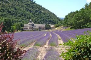 Senanque, Frankreich